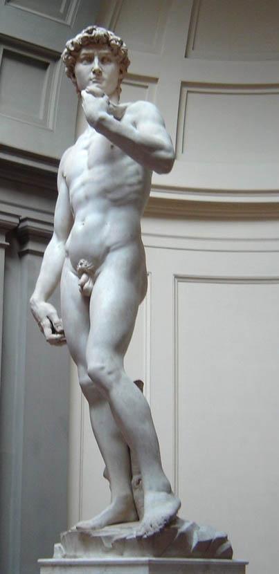 David (1501-1504-d-2)