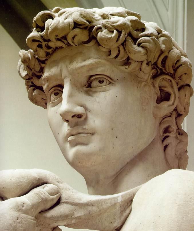 David (1501-1504-d-8)