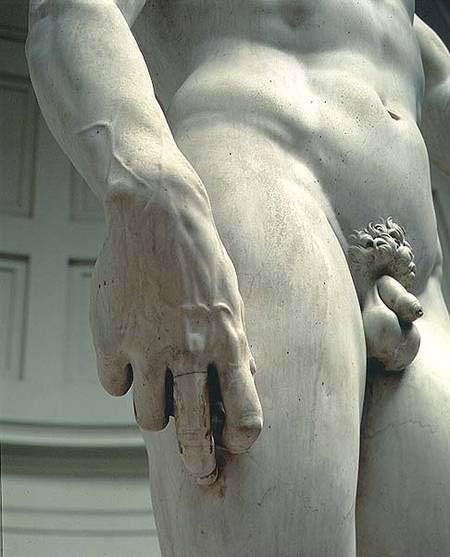 David (1501-1504-d-9)