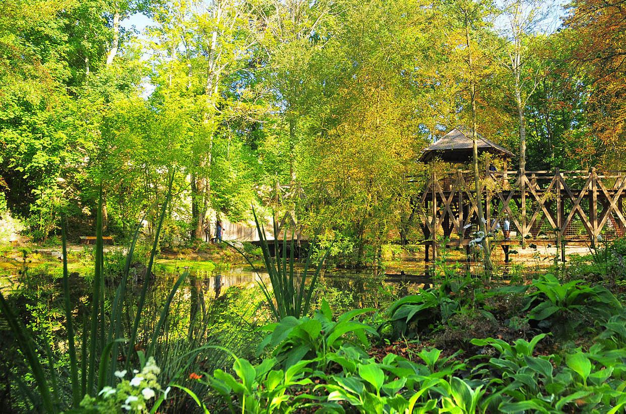 Garden of Leonardo