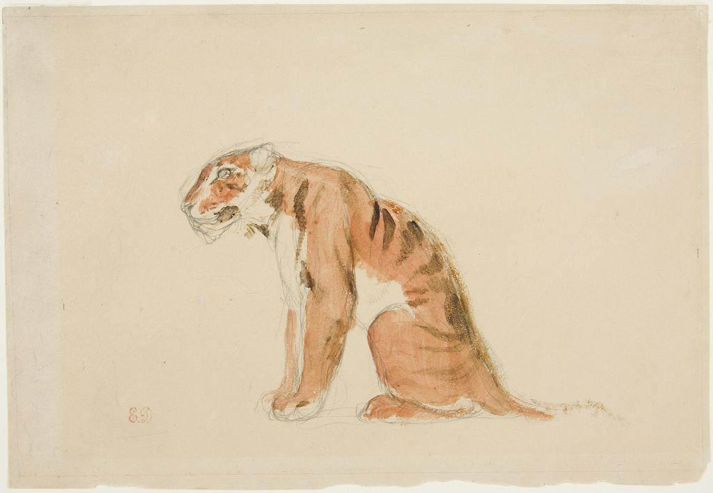 Sketch of a Tiger (Delacroix)