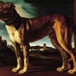 Cane Aldrovandi (c. 1625)