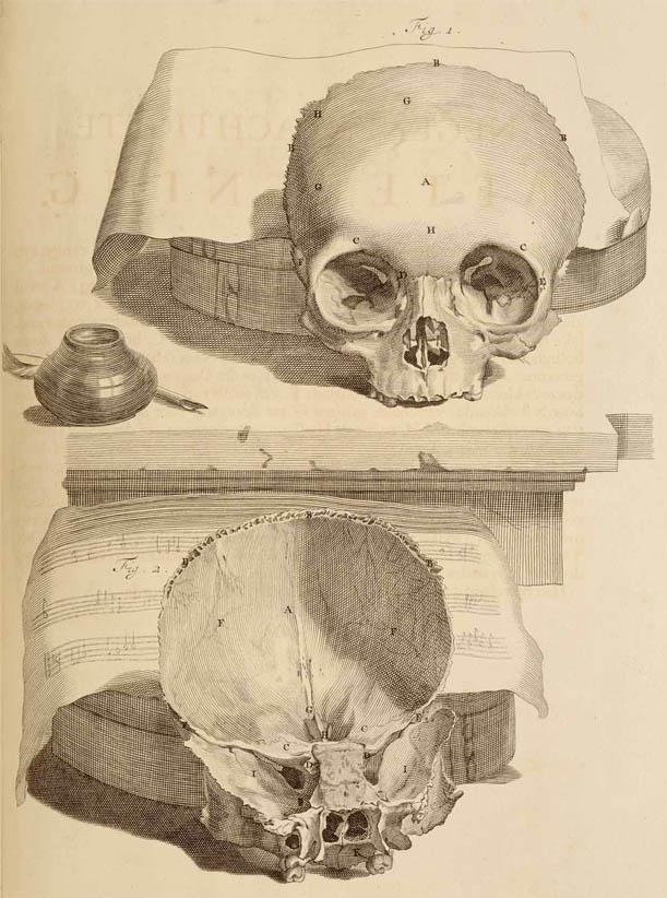 Anatomia Humani Corporis (1690-I-3)