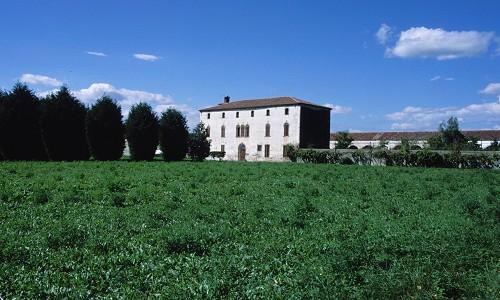 Isola Mantegna (Italia)