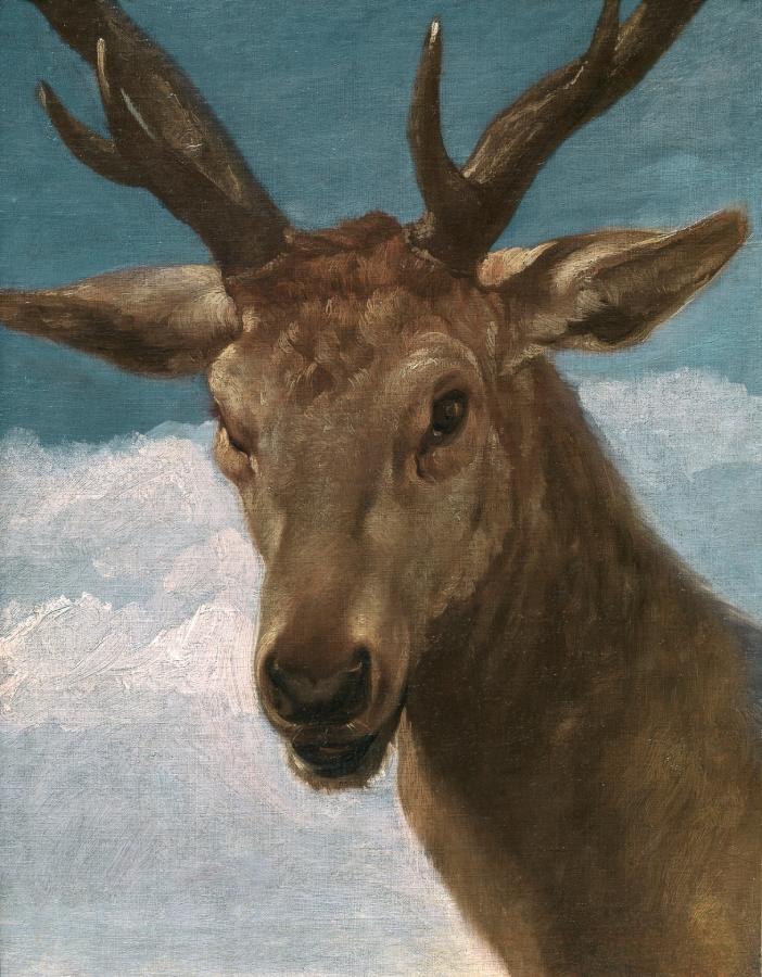 Cabeza de venado (1626-1636)