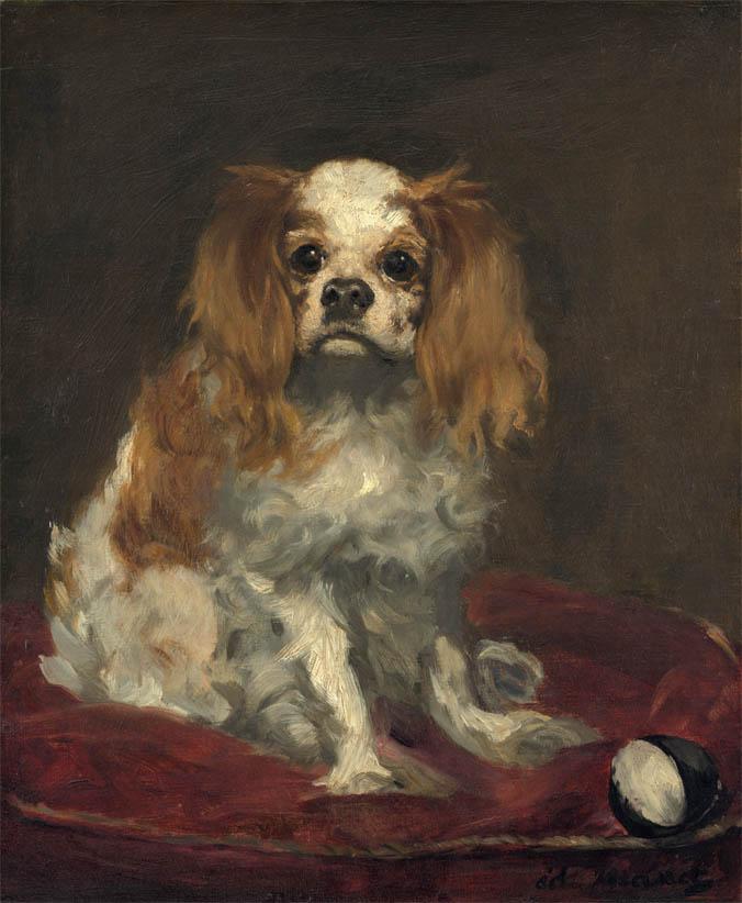 A King Charles Spaniel (c 1866)